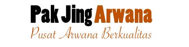 Pak Jing Arwana